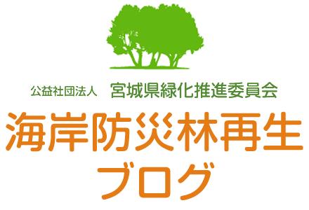 海岸防災林再生活動レポート