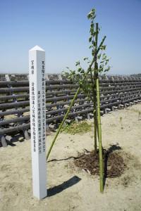 記念植樹2