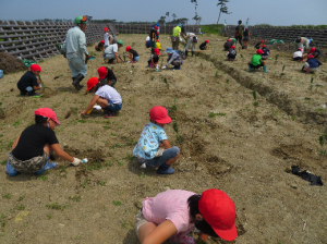六郷小学校(植樹)